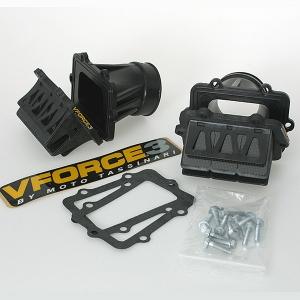 Vforce3 Rotax 600 e-tec
